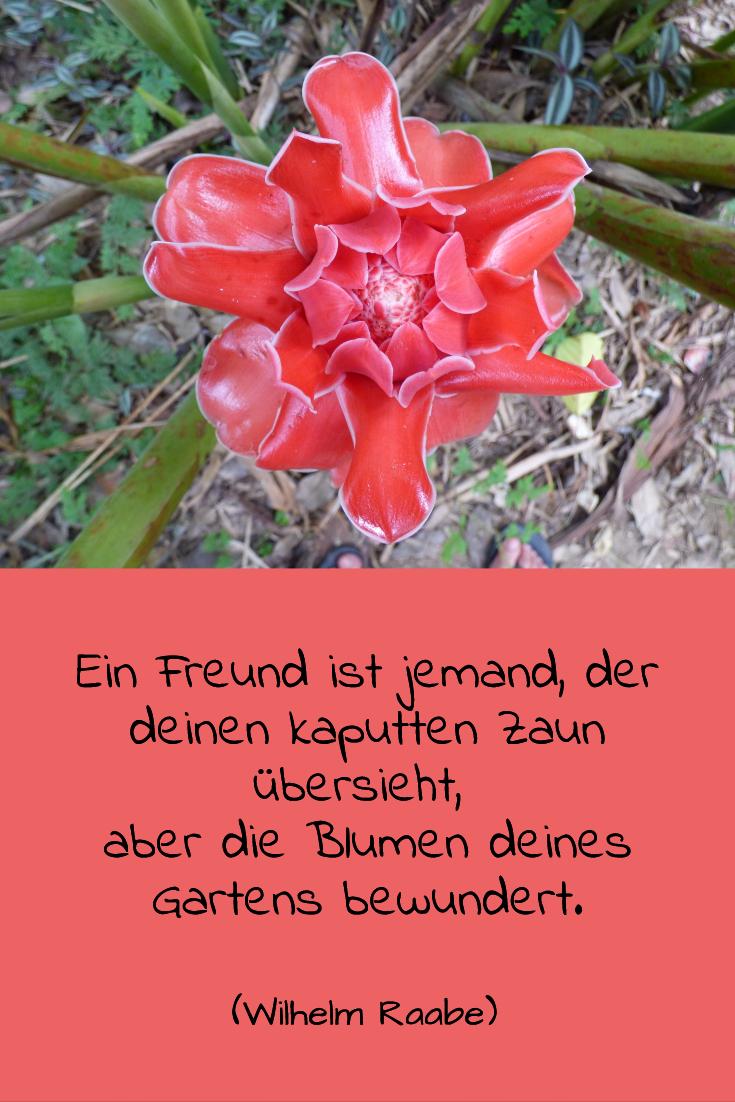Gartenzitat Blumen
